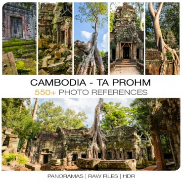 Cambodia - Ta Prohm Photo Packs