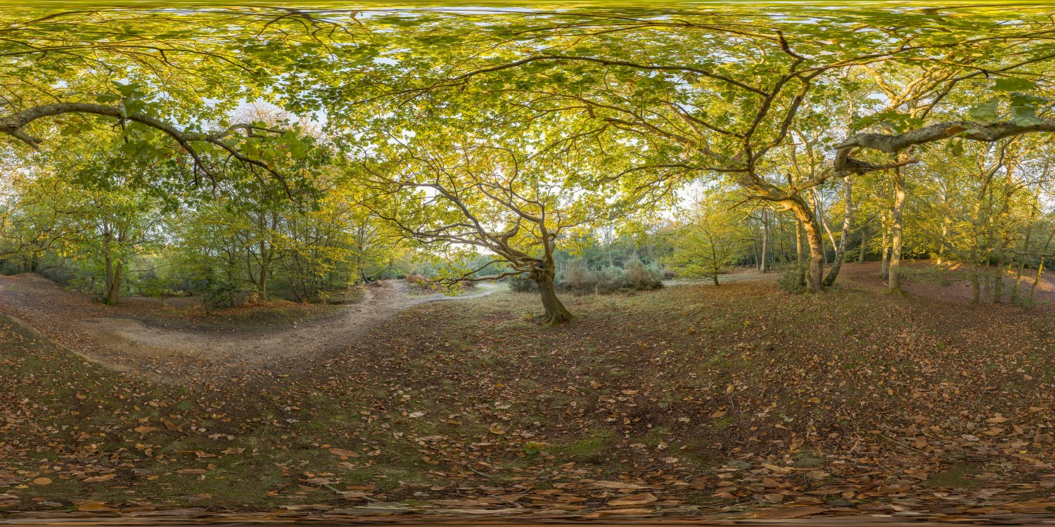 EPPING FOREST 64k
