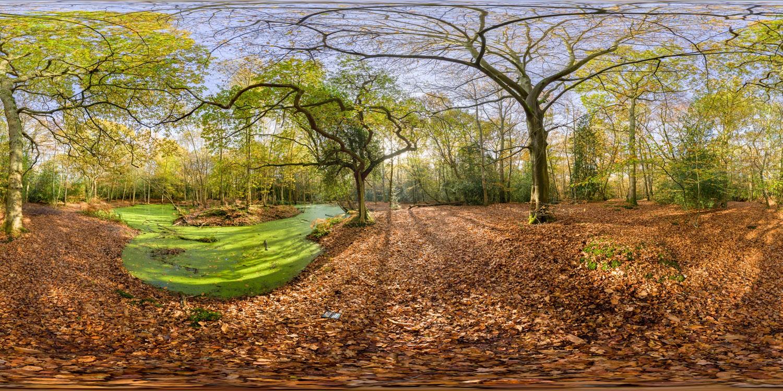 Epping Park 0098 (30k) HDRI