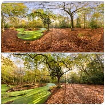 Epping Park 0098 (30k) HDRI Panoramas