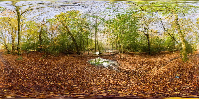 Epping Park 0273 (30k) HDRI