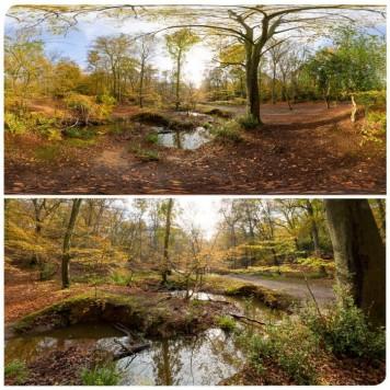 Epping Park 0623 (30k) HDRI Panoramas