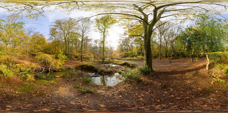 Epping Park 0623 (30k) HDRI