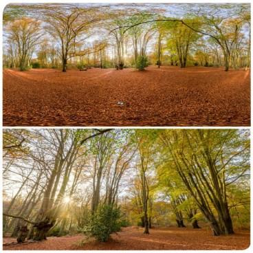 Epping Park 0993 (30k) HDRI Panoramas