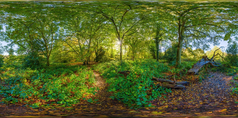 Hampstead Park 7207 (30k) HDRI