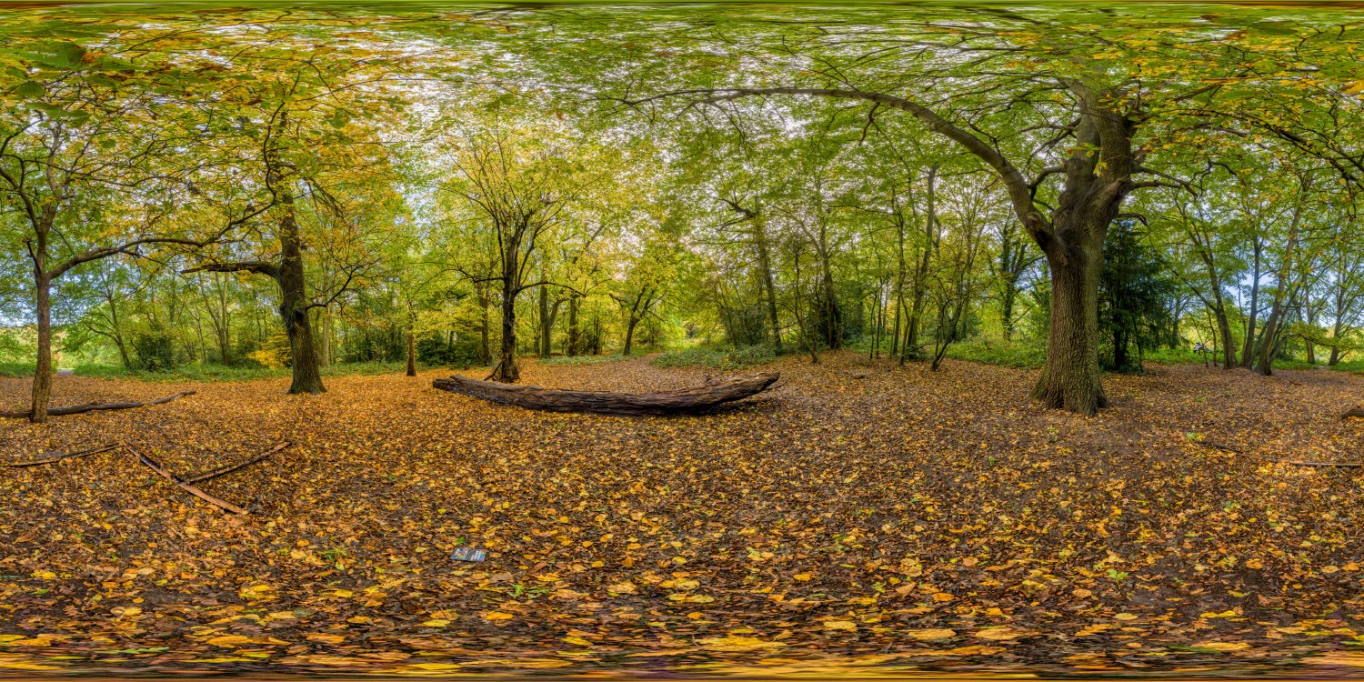 Hampstead Park 7579 (30k) HDRI