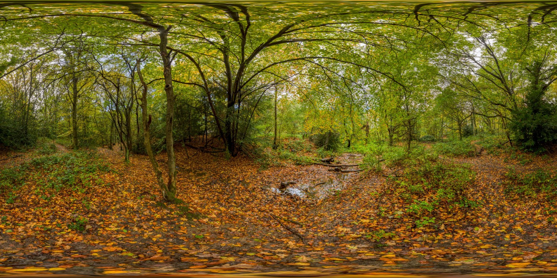 Hampstead Park 7739 (30k) HDRI
