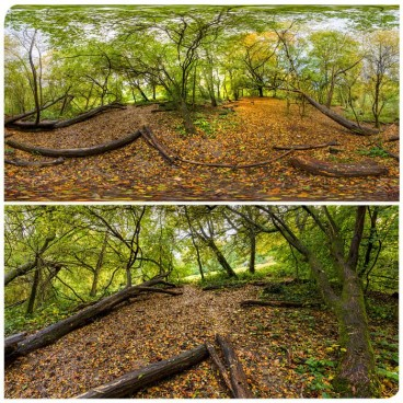 Hampstead Park 8072 (30k) HDRI Panoramas