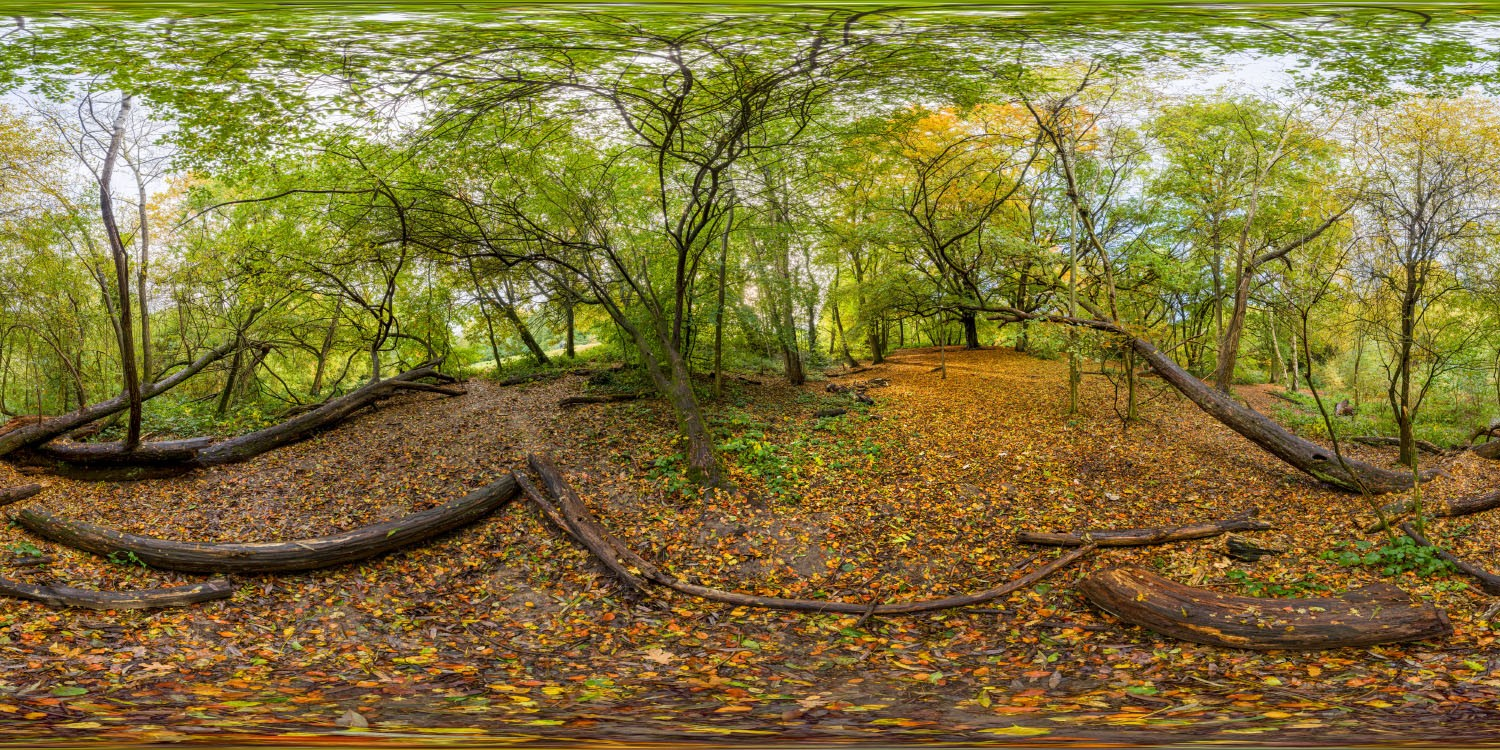 Hampstead Park 8072 (30k) HDRI
