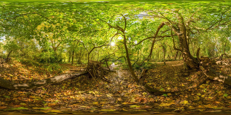 Hampstead Park 8722 (30k) HDRI