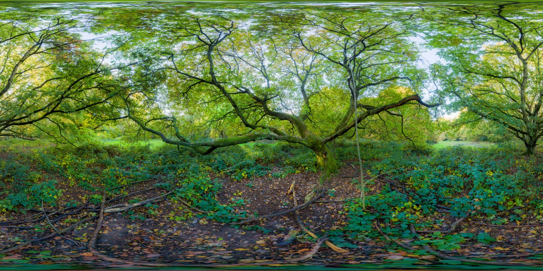Hampstead Park 9429 (30k) HDRI