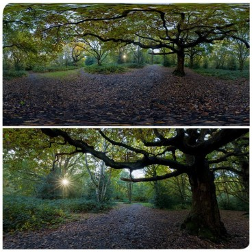 Hampstead Park 9589 (30k) HDRI Panoramas