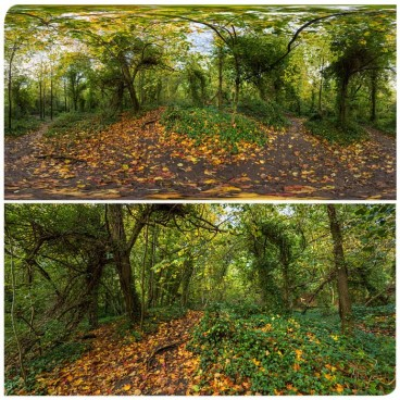 Hampstead Park 9769 (30k) HDRI Panoramas