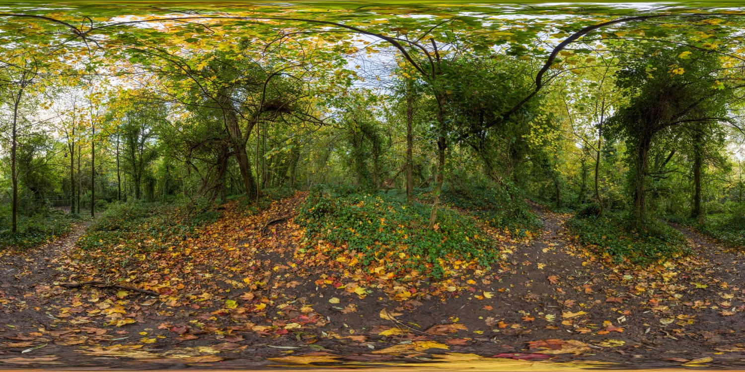 Hampstead Park 9769 (30k) HDRI