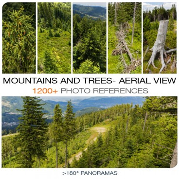 MOUNTAINS AND TREES - AERIAL VIEW