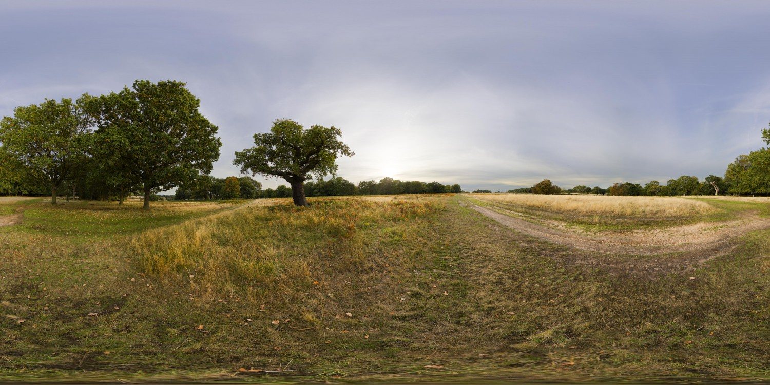 Richmond Park Autumn (30k) HDRI
