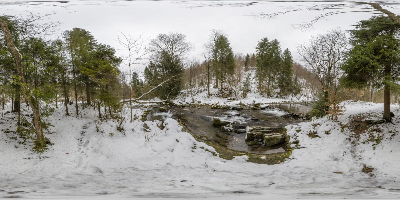 Winter Forest 1 (30k) HDRI