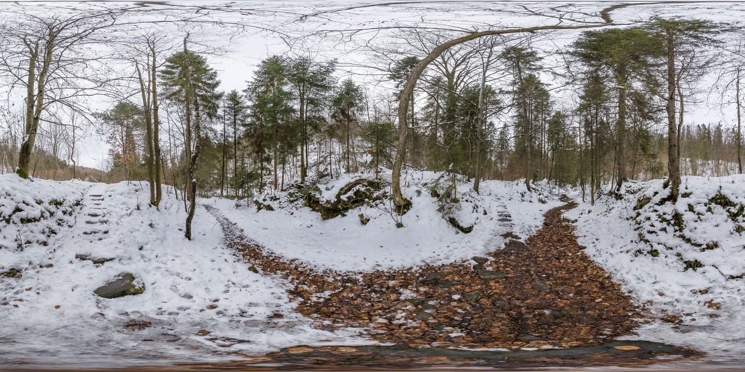 Winter Forest 3 (30k) HDRI