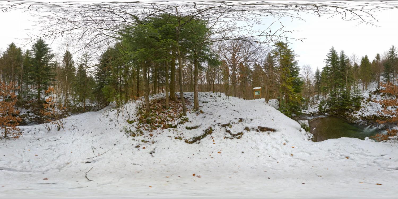 Winter Forest (30k) HDRI
