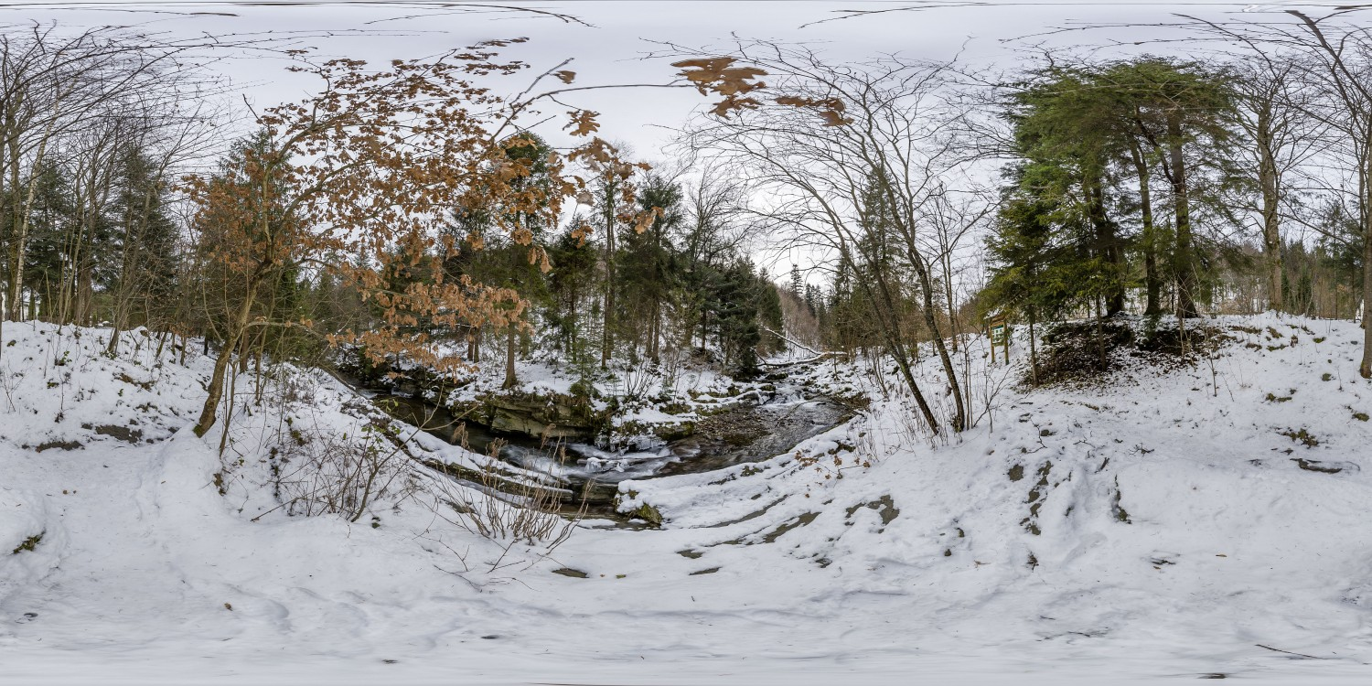 Winter Forest 4 (30k) HDRI