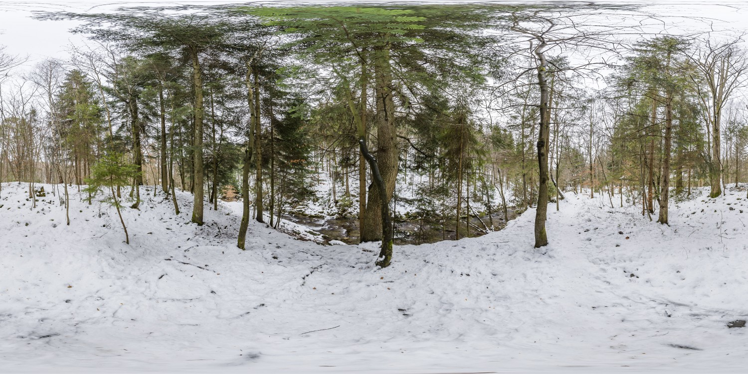 Winter Forest 5 (30k) HDRI